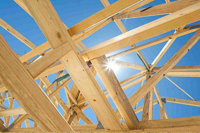 zalety budowy domów szkieletowych